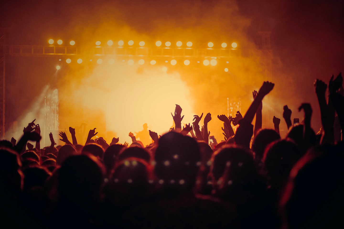 Concerts and culture